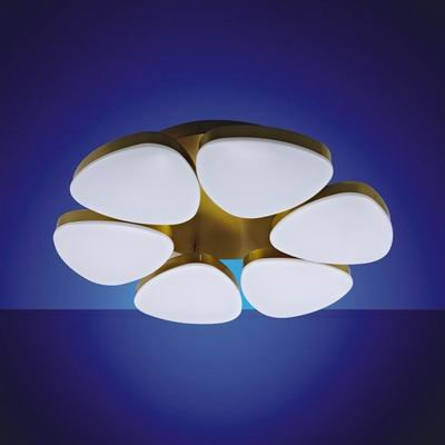 LED ceiling lamp---six pieces group fixture  CE Approval